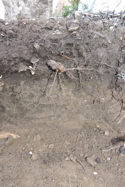 Clear layers of soil